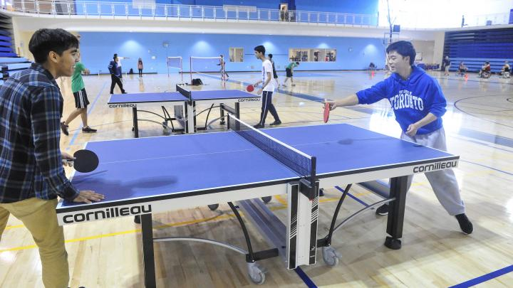 Drop-in Badminton/Table Tennis (Adult)
